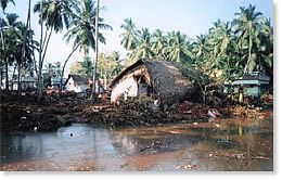 The Tsunami that wreaked havoc in Dec, 2004