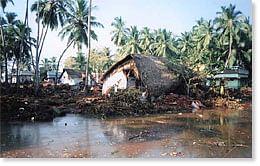 The Tsunami that wreaked havoc in Dec, 2004