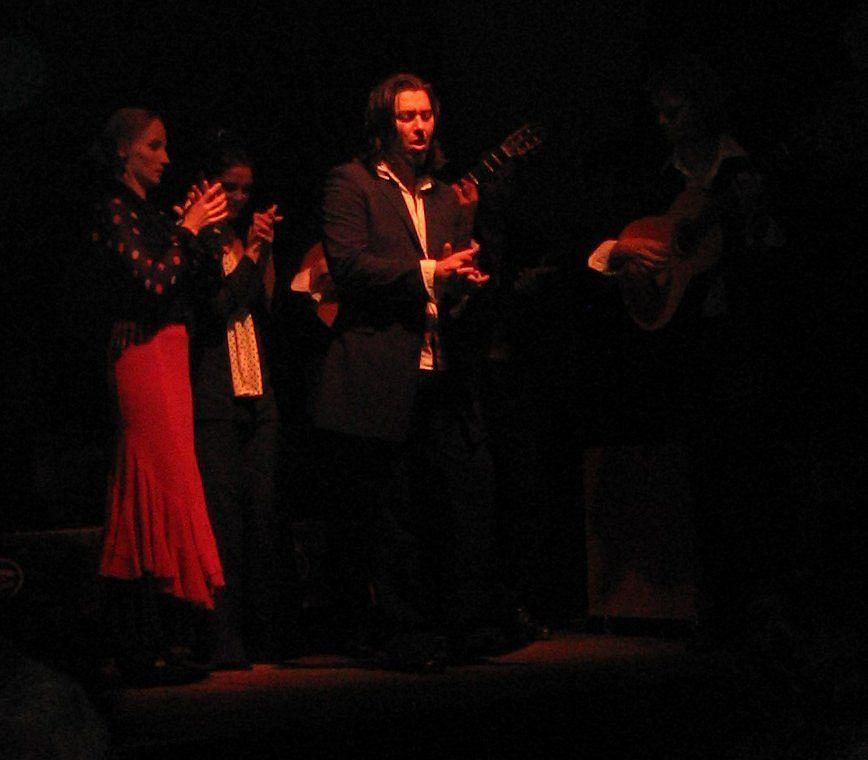 Flamenco Returns to India