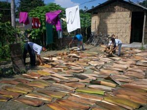 The Raw Material Left for Drying