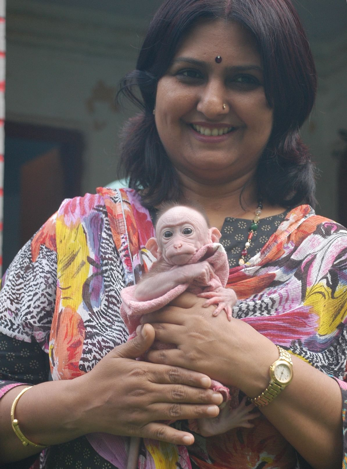 Renu Singh, Director of Lucknow Zoo, holding a newborn Bonnet Monkey at the zoo. The Bonnet Monkey is an endangered species, which is now being bred at the Lucknow Zoo. (Credit: Vikas Babu\WFS)
