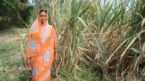 Kantabai Chavan