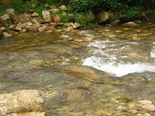 The Kosi near its source
