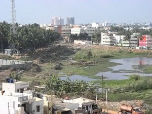 View of an island on Puttenahalli Lake in 2009