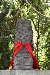 The snake shrine in the forest, close to Agumbe Rainforest Research Station