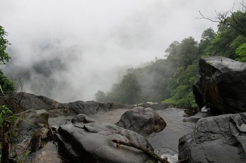 Agumbe is a beautiful rainforest set in the Western Ghats. It receives the second highest rainfall in India.