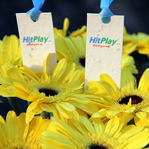 Bookmarks that can be planted after use to grow sunflowers