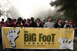 AT - Big Foot Campaign