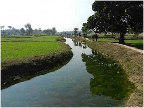 Ahar Pyne system in Gaya, South Bihar; Image courtesy: Hindi Water Portal