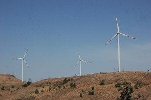 The windmills mushrooming