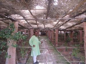 Varun Arya - the man behind the transformation