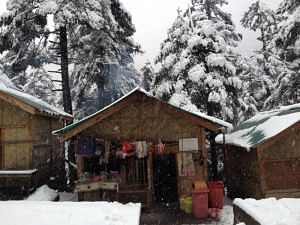 Small Cabins at Yumthang