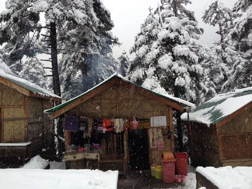 Small Cabins at Yumthang