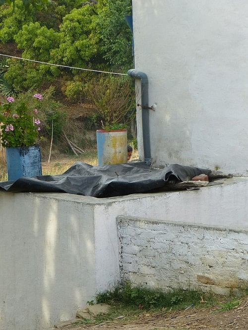 A simple rooftop rainwater harvesting system provides drinking water and protective irrigation