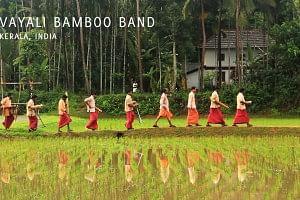 bamboo-band
