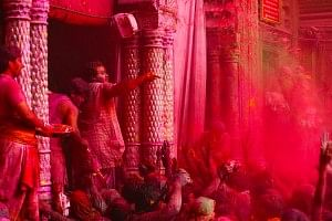 A priest at the Sri Banke Bihari temple throwing gulaal at the devotees.