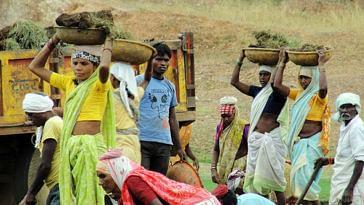 Labourers carring silt of the Kisanpuri Malguzari tank