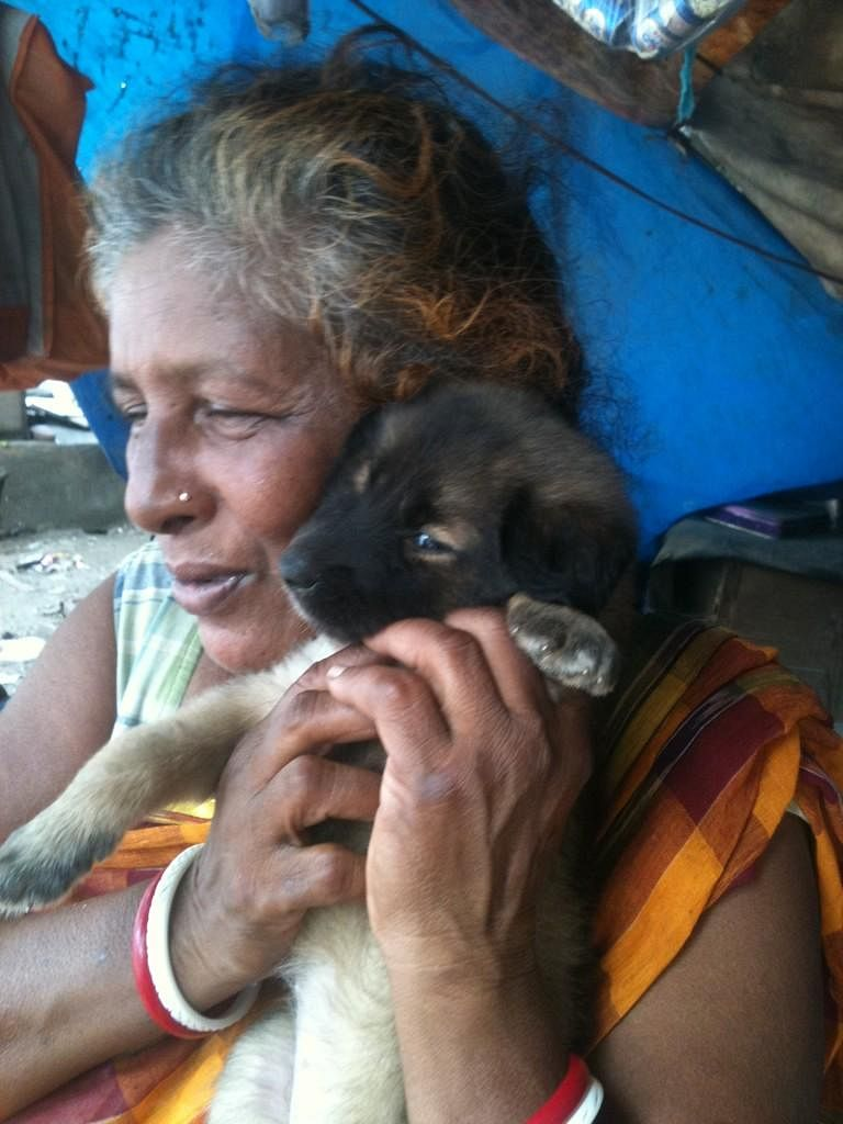The Incredible Dog Rescuers And Animal Lovers Of India – They Keep Our Hope Alive In Humanity!