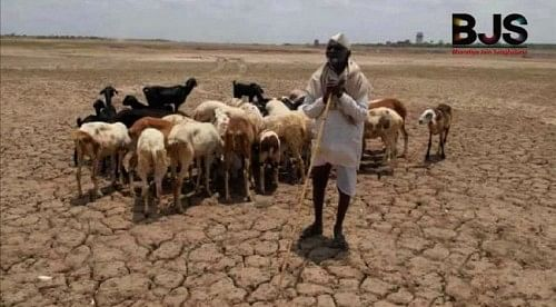 Drought is a regular summer feature in Maharashtra