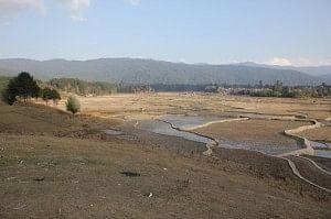 Ziro Valley post winter harvest