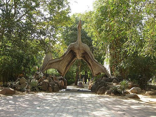 indroda-dinosaur-and-fossil-park-images-photos-526605b9e4b0ece851d9b806