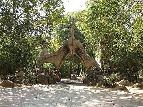 indroda-dinosaur-and-fossil-park-images-photos-526605b9e4b0ece851d9b806