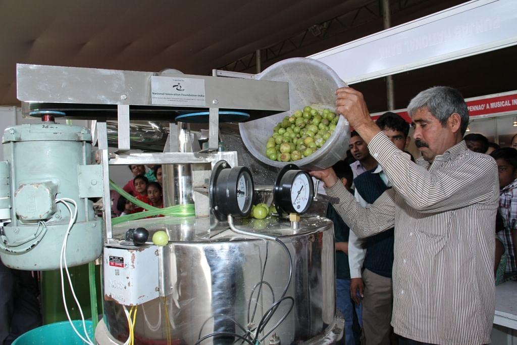 amla processing machine
