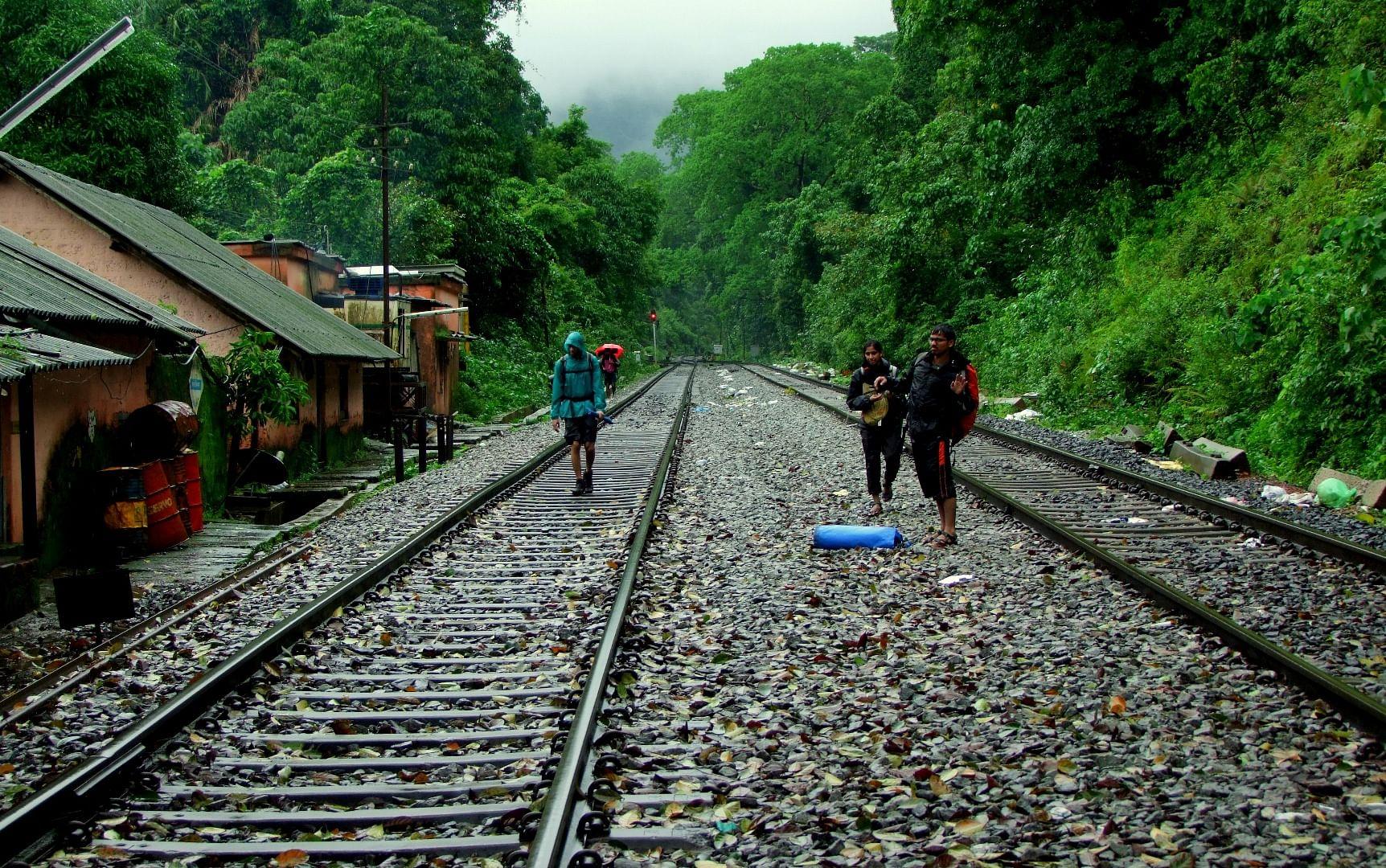 Monsoon magic along the track