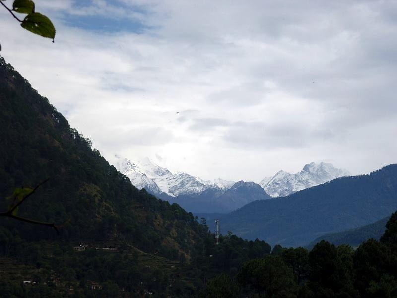 snow capped peaks, netala