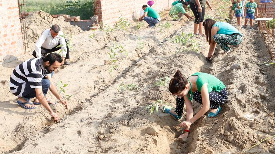 How Citizens Of Ludhiana Came Together And Planted 1,50,000 Saplings In One Hour!