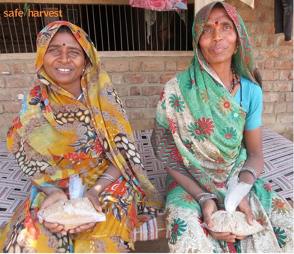 Jamna Bai (left) and Sukma Bai from Postipura Madhya Pradesh, hand over samples of their wheat harvest for #NPMi compliance. NPMi (Non Pesticide Management initiative) tests for traces of 98 pesticides.