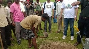 vodafone tree planting