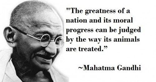 Ghandi Quote | 5 Of Our Favourite Quotes By Mahatma Gandhi Which Inspire Us