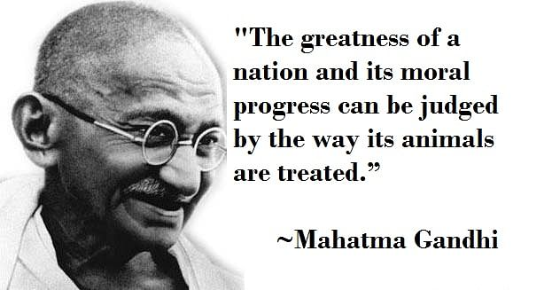 Ghandi Quote Adorable 48 Of Our Favourite Quotes By Mahatma Gandhi Which Inspire Us