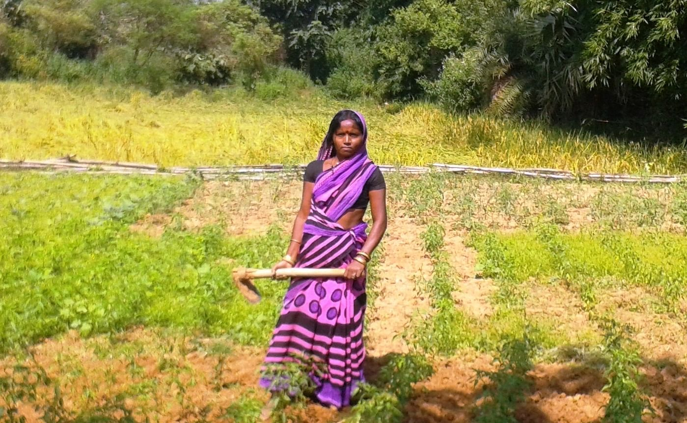 modern methods of agriculture used in india