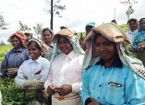 BBTC Tea Factory, women