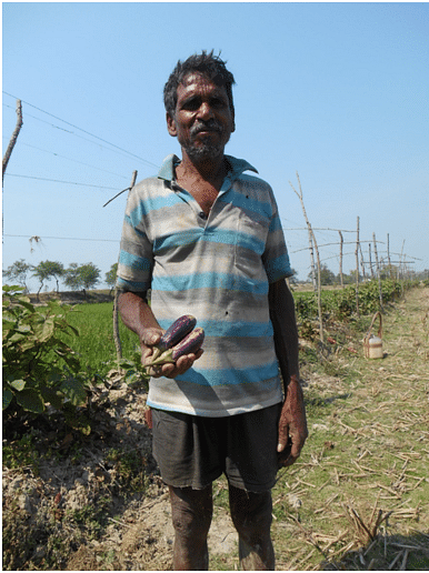 Mr Biswanath Mondal has started following organic farming.