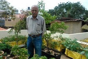 Dr. Vishwanath in his terrace garden