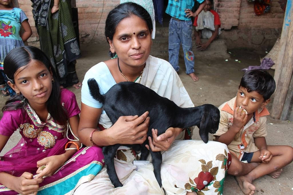 A Rang De borrower in Pusad, Maharashtra engaged in goat rearing