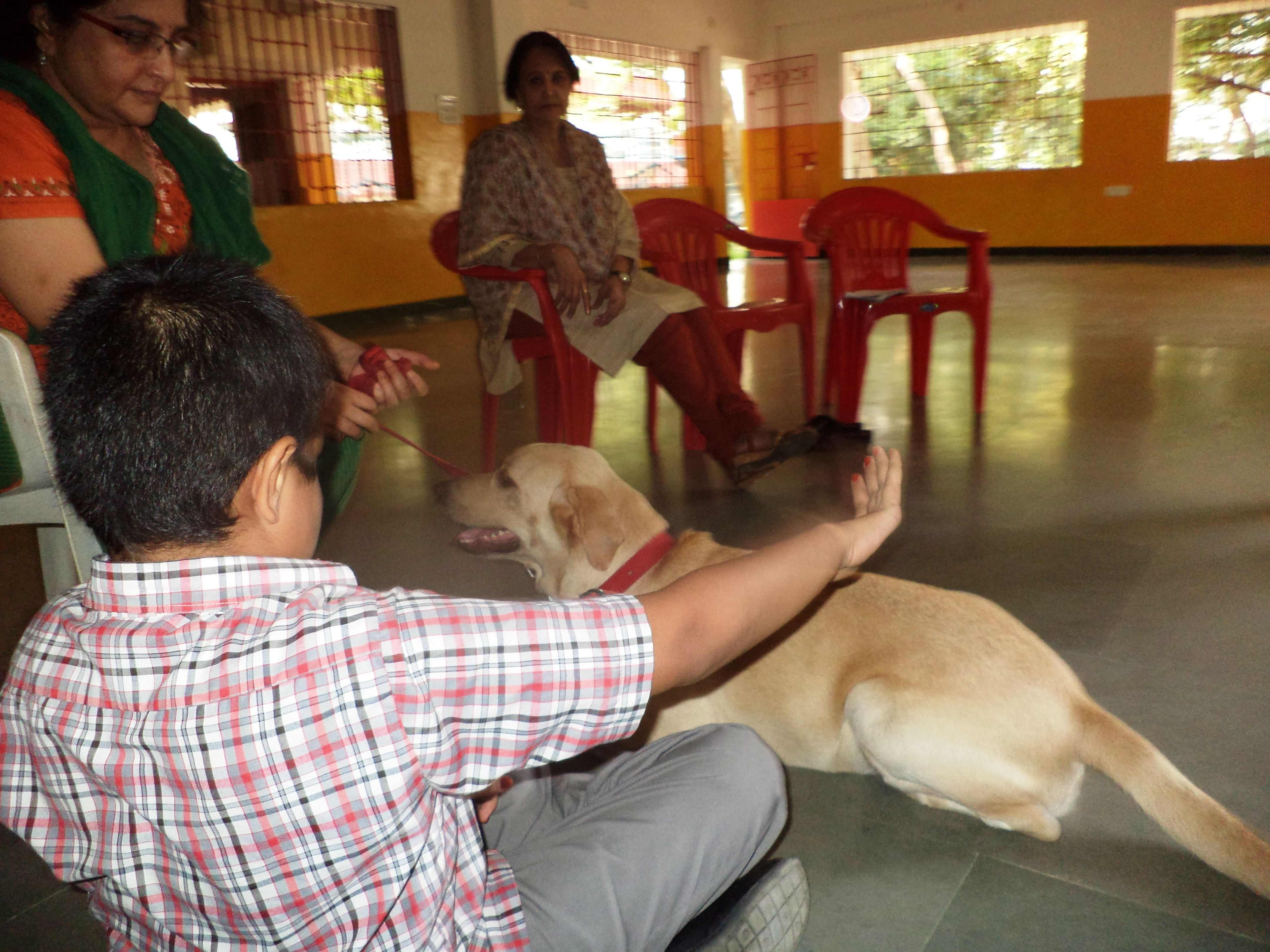 The treatment of Dr Ruffles, an affectionate dog and resident 'doctor' at a hospital in Chennai, has helped several children with special needs to overcome their learning disabilities and resolve complex behavioural issues.