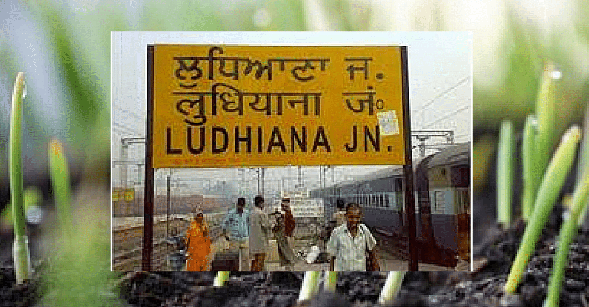 Ludhiana District to Become Completely Free of 'Open Defecation' in 3 Years