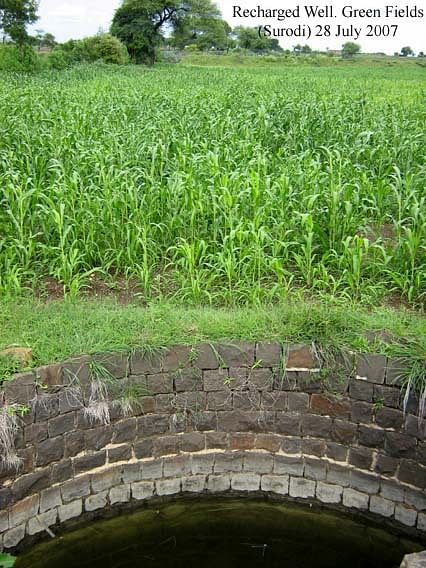 Recharged wells help produce full crop in Surodi village