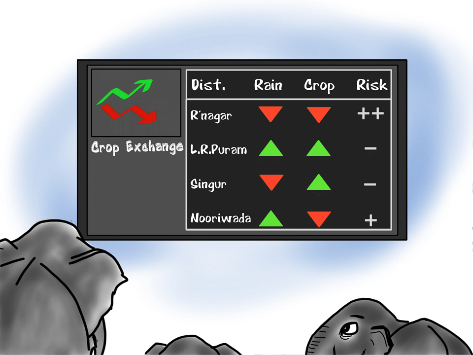 Recently, scientists studied how and where conflicts with elephants occur. They found that these animals follow the rainfall pattern, probably aware that better rainfall means successful crop growth. That is just fascinating!