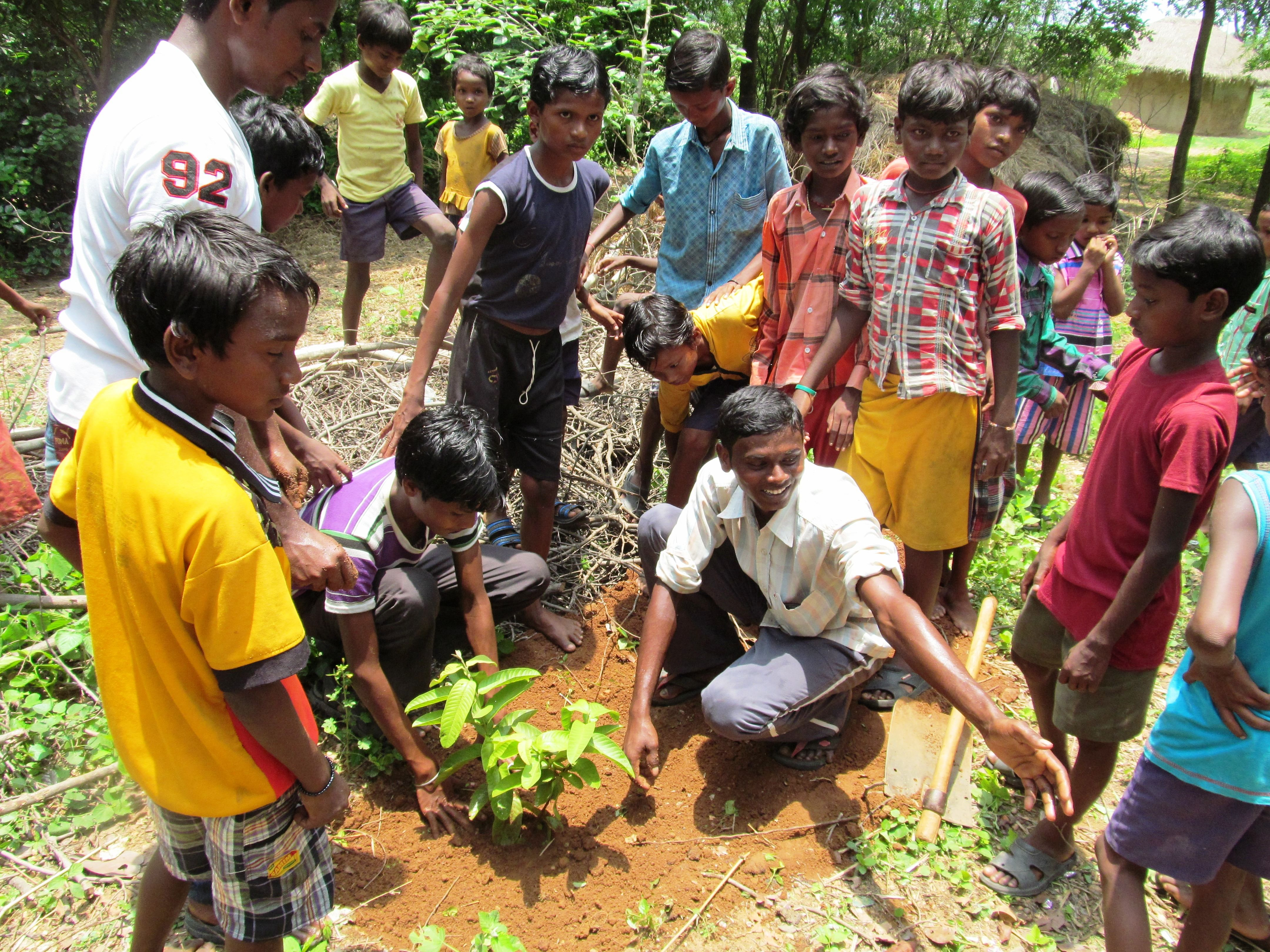 Ten youth clubs in the region have created gardens on the premises of 11 primary schools as well as two ICDS centres, all of them managed by the young members. (Credit: DRCSC\WFS)