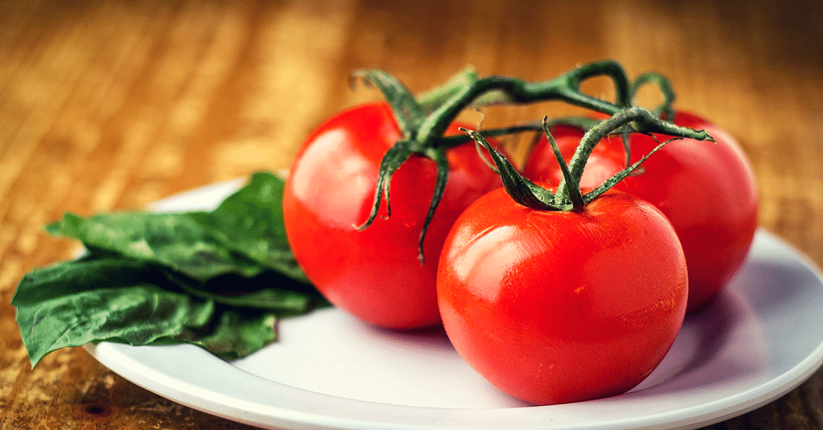 Ever Thought That Tomatoes Could Generate Solar Energy? Some Researchers in Rajkot Did!