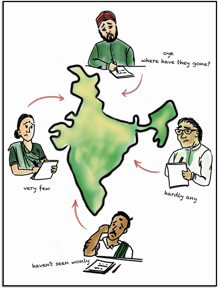 So, what a bunch of scientists did, was they sent out survey forms – across India – asking people if they have been seeing vultures around their place and if there is any decline. 'A bit of worry' turned into serious concern when bird watchers and ornithologists from all parts of India wrote back saying vulture numbers were going down severely.