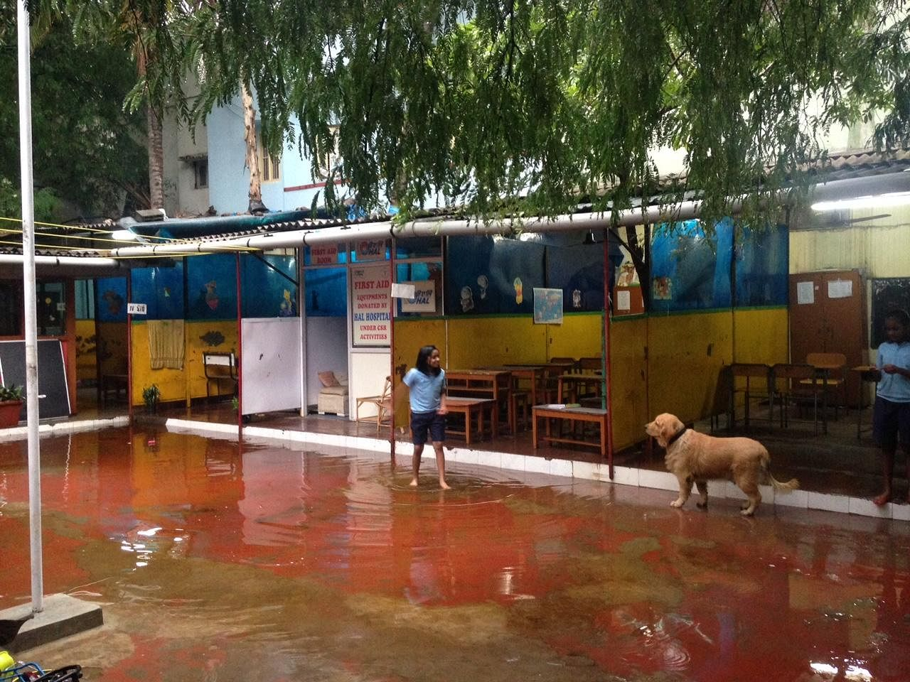 The classroom area stands swamped with an afternoon's rain, while the kids and the in-house pets play ball