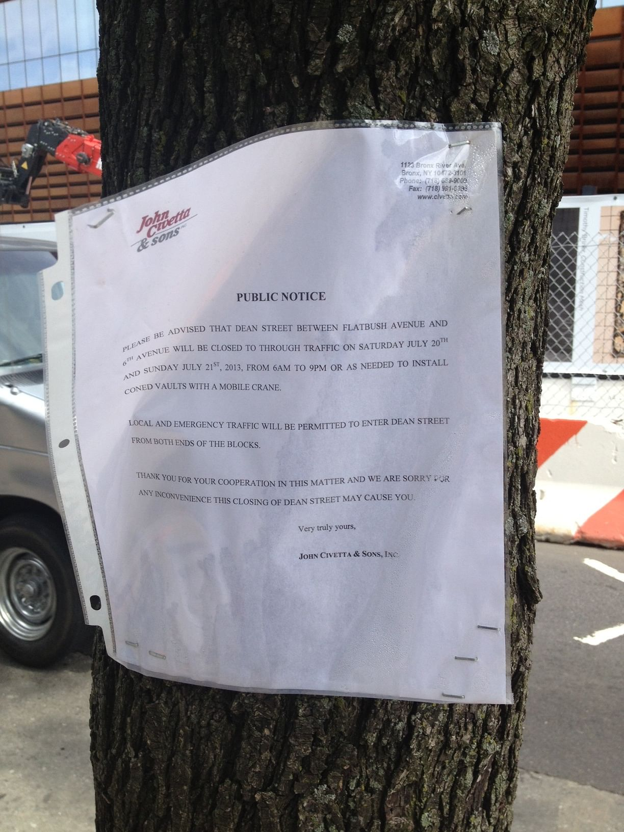 flyer in street tree one_0