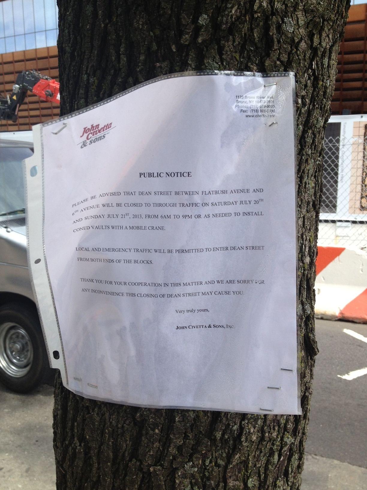 flyer in street tree one_0