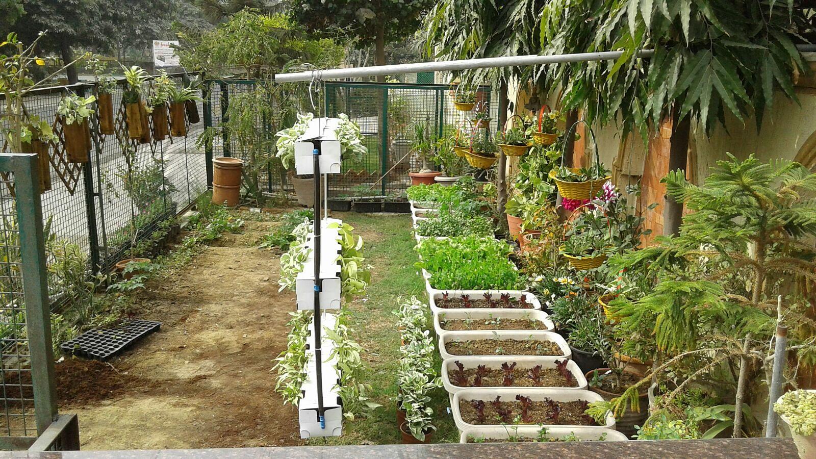 Flowering plants and vegetables grown with Bioneer compost. Photo credit: MK Garg